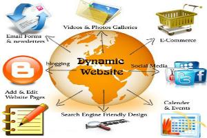web idea 2